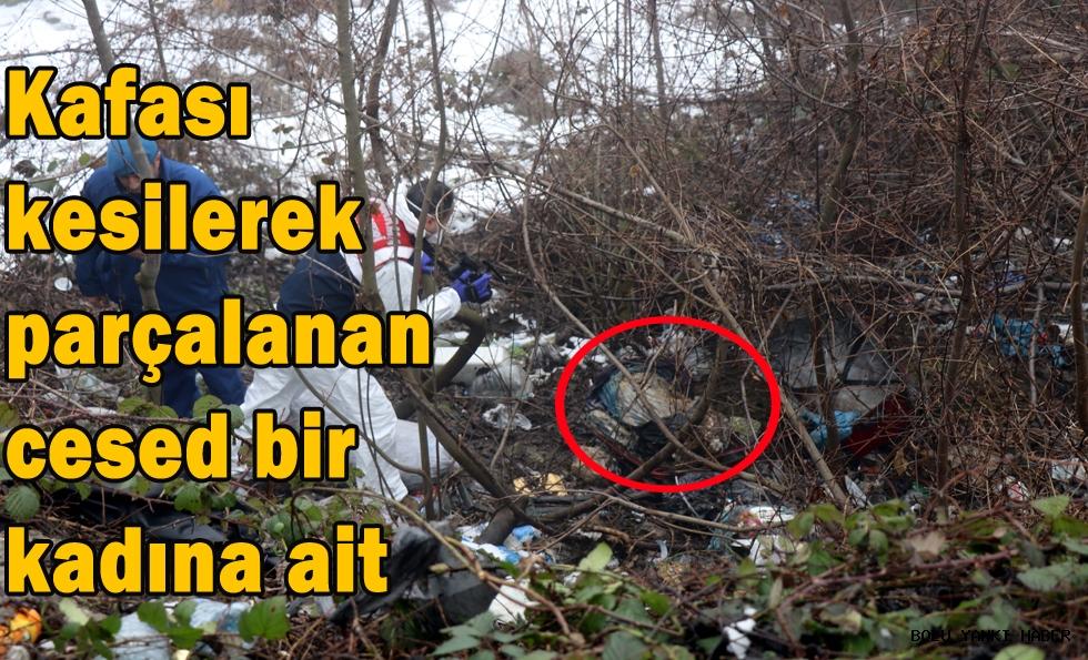 Bolu Dağı'nda bavul içerisinde bulunan ceset bir kadına ait