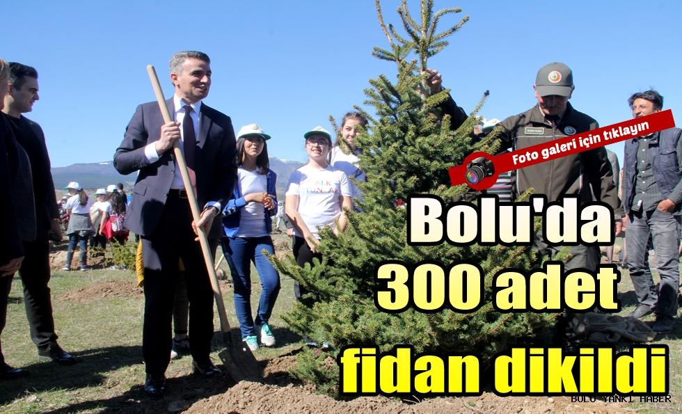 Bolu'da 300 adet fidan dikildi