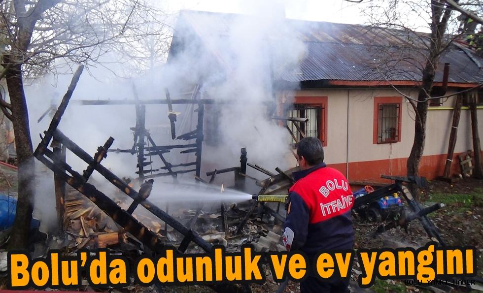 Bolu'da odunluk ve ev yangını