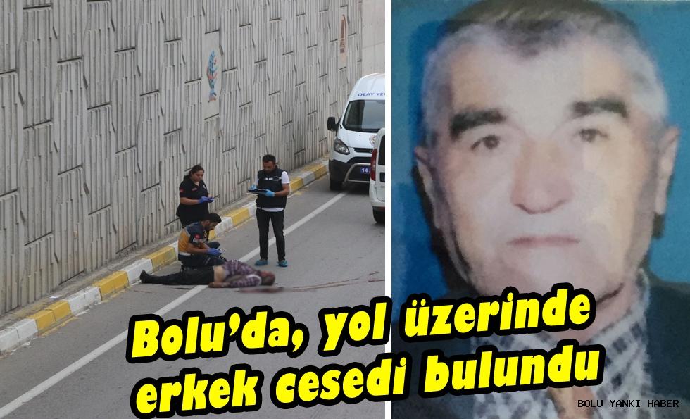 Bolu'da, yol üzerinde erkek cesedi bulundu