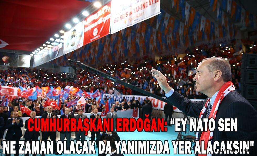 Cumhurbaşkanı Erdoğan;''Ey NATO sen ne zaman olacak da yanımızda yer alacaksın''