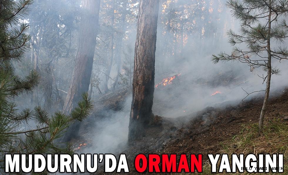 MUDURNU'DA ORMAN YANGINI