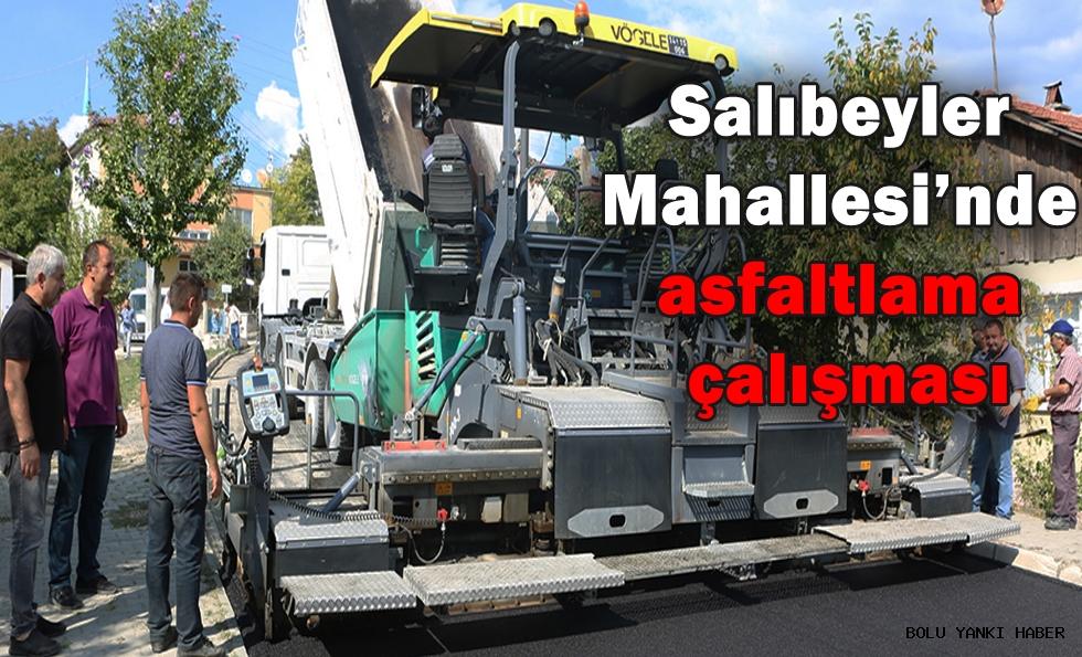 Salıbeyler Mahallesi'nde asfaltlama çalışması