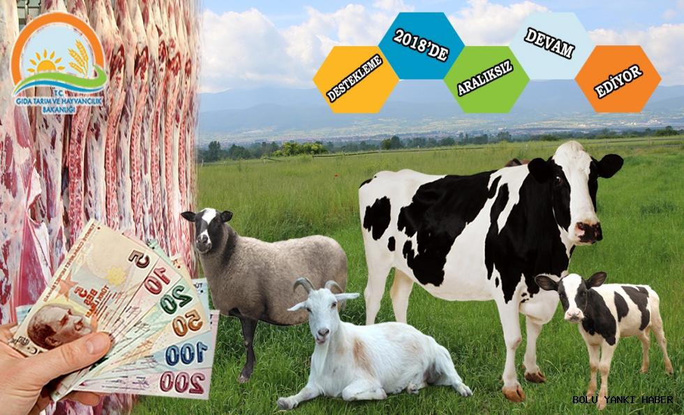 Tarımsal Destekleme Ödemeleri 2018'de de Aralıksız Devam Ediyor