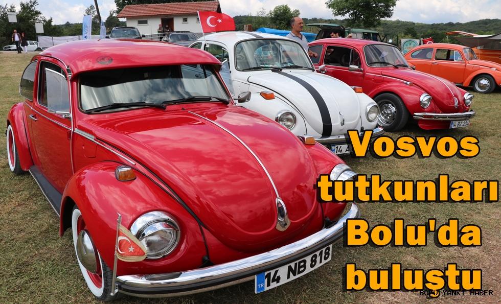 Vosvos tutkunları Bolu'da buluştu